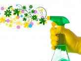 Bahar Kampanyası: Ev Temizliğinde %30 İndirim Fırsatı