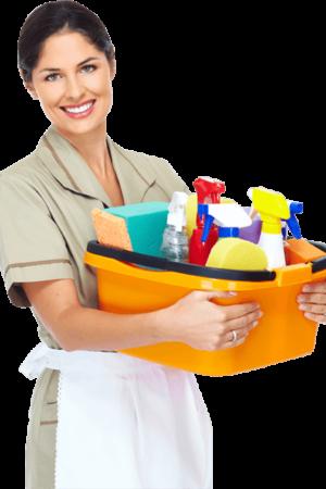 beylikdüzü temizlik şirketi